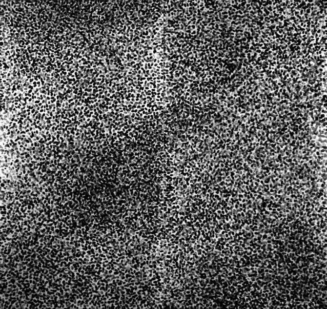 6.9 Billion, archival ink, resin, gesso on panel, 5'x6', Disquietude, 2010; Gallery of Visual Arts, University of Montana