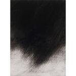 Black Rain, monotype, mezzotint, 1/1, Disquietude, 2010; Gallery of Visual Arts, University of Montana; sold.